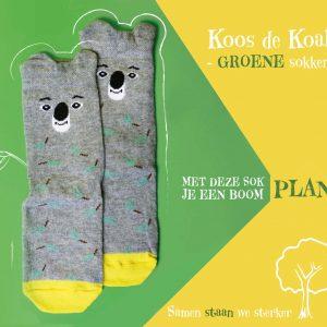 Koos_pro_sok_kids