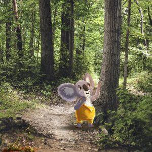bos speurtocht koos de koala